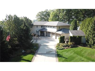 City Of The Vlg Of Clarkston, Clarkston, Independence, Independence Twp Single Family Home For Sale: 8789 Lakeview Boulevard