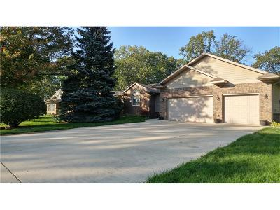 Gibraltar MI Single Family Home For Sale: $479,000