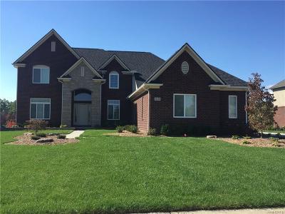 Novi Single Family Home For Sale: 28502 Martell Court