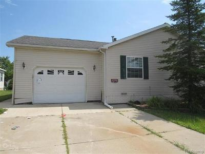 MACOMB Single Family Home For Sale: 45296 Catalpa