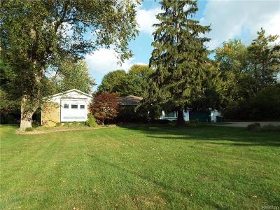 Novi Single Family Home For Sale: 28810 Summit Drive