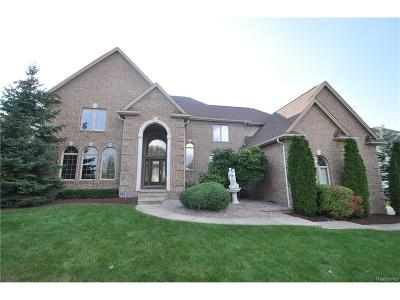 Shelby Twp Single Family Home For Sale: 55047 Meadow Ridge Court
