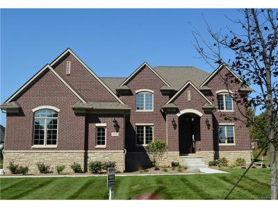 Sterling Heights Single Family Home For Sale: 3909 Corkwood Drive