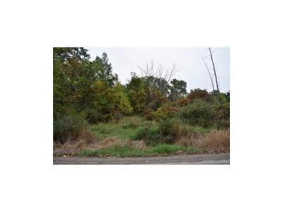 Washington Twp Residential Lots & Land For Sale: Parcel B Campground Road