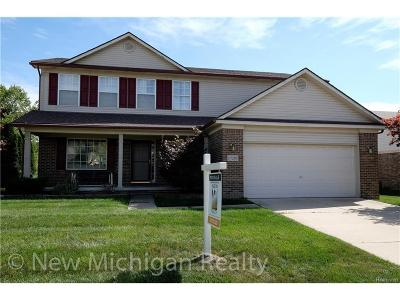 Brownstown Twp Single Family Home For Sale: 17293 Michigan Heights