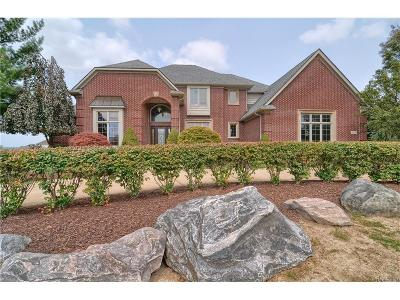 Northville Twp Single Family Home For Sale: 16290 Horseshoe Drive