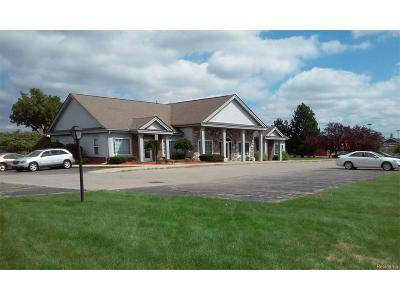 White Lake Twp Commercial For Sale: 9178 Highland Road