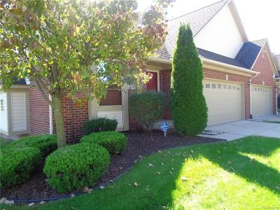 Brownstown Twp Condo/Townhouse For Sale: 20258 Doves Pointe Drive