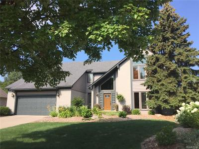 Novi Single Family Home For Sale: 25411 Sullivan Lane