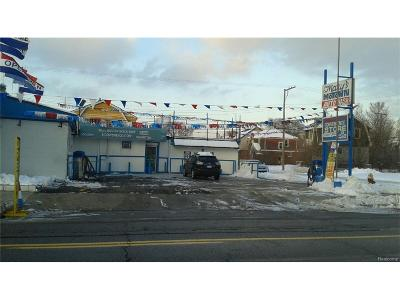 Detroit MI Commercial For Sale: $90,000
