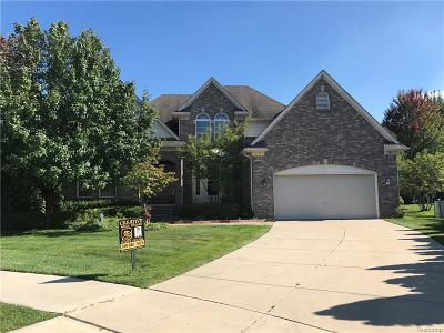 Sterling Heights Single Family Home For Sale: 15134 Shiraz Court