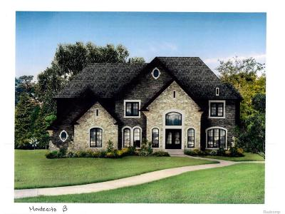 Novi Single Family Home For Sale: 50400 Boardwalk Avenue