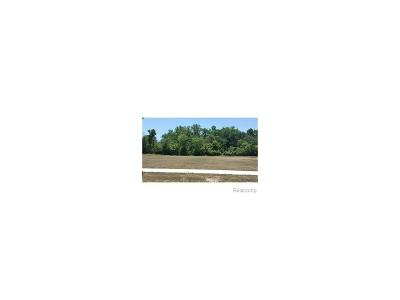 Flat Rock MI Residential Lots & Land For Sale: $39,900