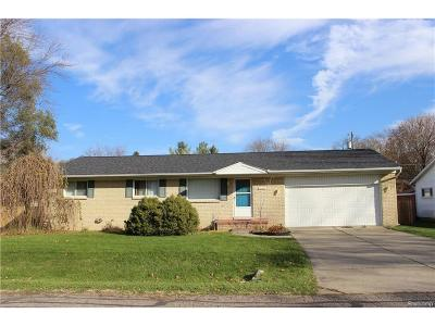 Farmington Hills Single Family Home For Sale: 21672 Whittington Street