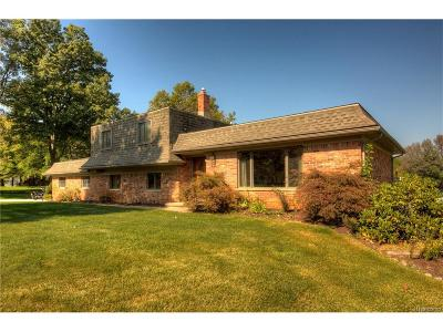 Commerce Twp Single Family Home For Sale: 6079 Venice Drive