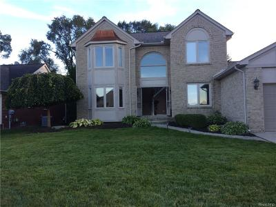 Rochester Single Family Home For Sale: 1878 S Shore Drive