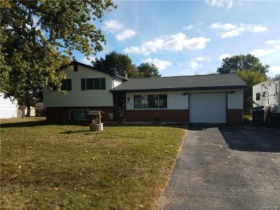 White Lake Single Family Home For Sale: 312 Decca Drive