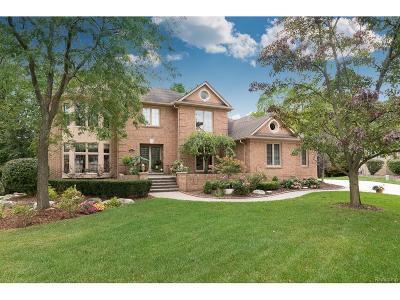 Rochester Hills Single Family Home For Sale: 3656 Edinborough Drive
