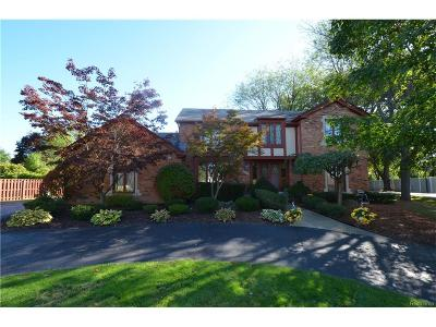 West Bloomfield Single Family Home For Sale: 6043 Orchard Ridge Court