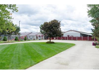 Handy Twp MI Commercial For Sale: $1,200,000