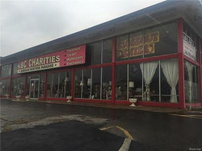 Southfield Commercial For Sale: 23140 W Eight Mile Road