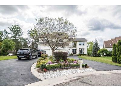 West Bloomfield Twp Single Family Home For Sale: 6189 Timberwood N