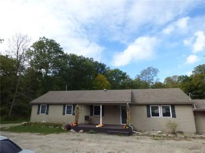 Lyon Twp Single Family Home For Sale: 22111 Natasha Lane