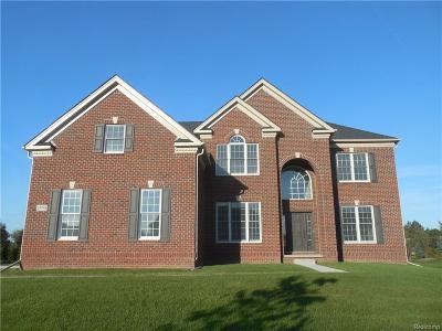 Novi Single Family Home For Sale: 24798 Acorn Trail