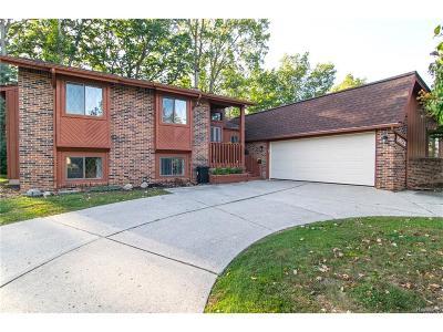 West Bloomfield Single Family Home For Sale: 5928 Naneva Court