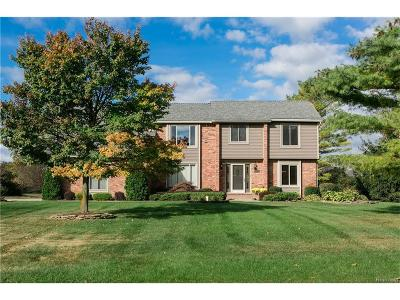 Novi Single Family Home For Sale: 25229 Birchwoods Drive