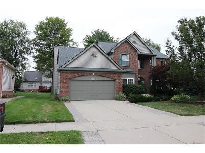 Farmington Hills Single Family Home For Sale: 29316 Morningview