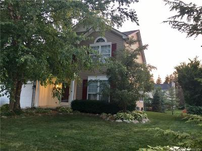 South Lyon Single Family Home For Sale: 971 Oak Creek Drive