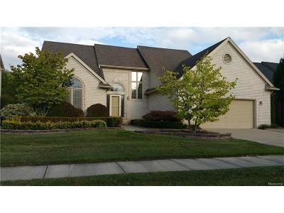 Macomb Twp Single Family Home For Sale: 47542 Woodberry Estates Drive