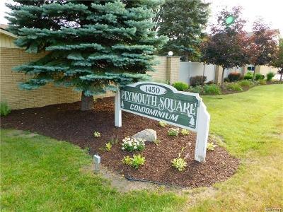 Plymouth Condo/Townhouse For Sale: 1450 Ann Arbor Road W #19
