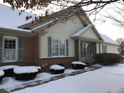 NORTHVILLE Condo/Townhouse For Sale: 39611 Village Run Drive