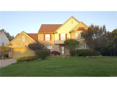 Troy Single Family Home For Sale: 6844 Fieldstone Drive