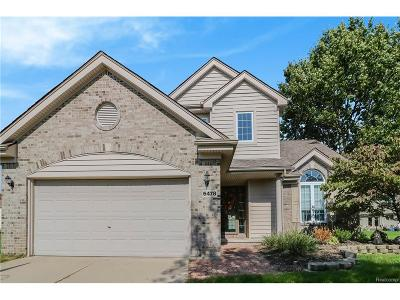 Independence Twp MI Single Family Home For Sale: $274,900