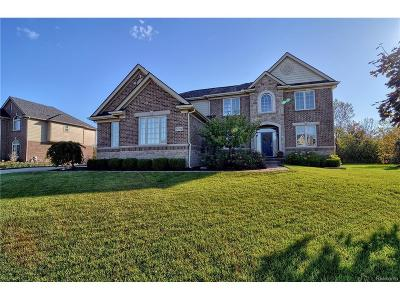 Lyon Twp Single Family Home For Sale: 22734 Cyprus Drive