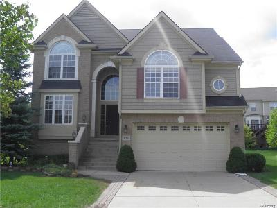 Northville MI Single Family Home For Sale: $424,500