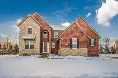 Novi Single Family Home For Sale: 47615 Alpine Drive