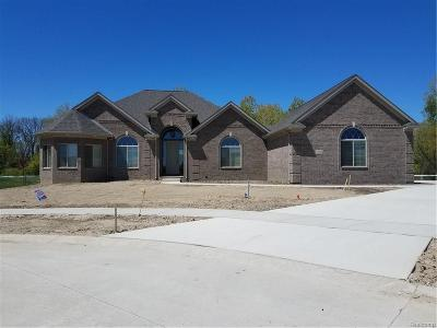 Huron Twp Single Family Home For Sale: 28697 Liparoto Boulevard