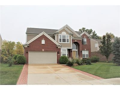 Northville Twp Single Family Home For Sale: 16880 Yellowstone Drive