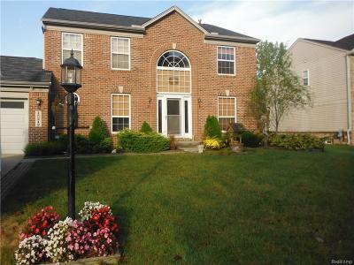 Belleville, Belleville-vanbure, Van Buren, Van Buren Twp Single Family Home For Sale: 15242 Brookside Drive
