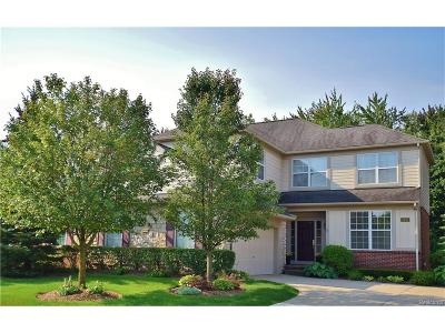 Rochester Condo/Townhouse For Sale: 2453 Winding Brook Court