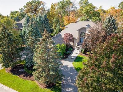 Rochester Hills Single Family Home For Sale: 1865 Archers Pointe
