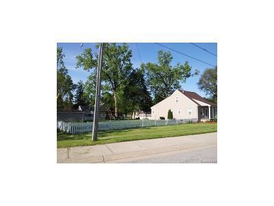 Novi Single Family Home For Sale: 44179 Old Grand River W