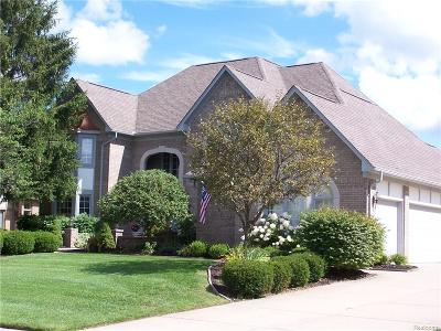 Rochester Single Family Home For Sale: 1232 Creek View Drive