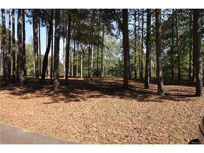 Residential Lots & Land For Sale: 9031 Pineview River Drive