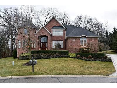 Farmington Hills Single Family Home For Sale: 28638 Wintergreen Court