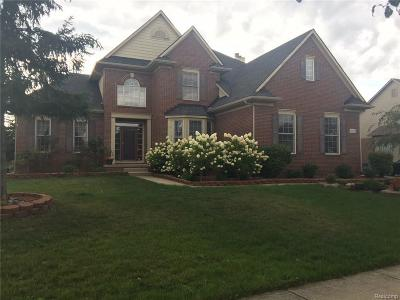 Novi Single Family Home For Sale: 30495 Pennington Lane